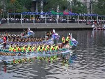 2017 Dragon Boat Races in Taiwan stock video footage