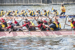 Dragon Boat Racing Arkivfoto