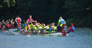 Dragon boat racing on the River Ouse at St Neots. stock photos