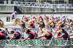 Dragon Boat Regatta Stockfoto