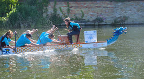 Dragon boat training on the river Ouse stock photo