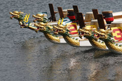 Dragon boats all lined up Royalty Free Stock Photography