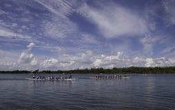 Dragon Boats sur l'admission de la Floride Photographie stock libre de droits