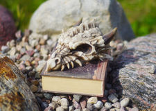 Dragon book Stock Photo