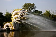 Dragon breathing water Royalty Free Stock Photography