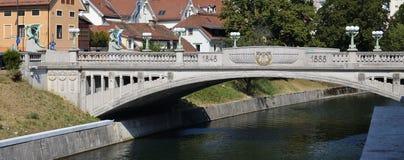 Dragon Bridge Ljubljana 5 Arkivbild