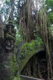 Dragon Bridge na floresta do macaco fotografia de stock royalty free