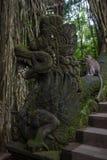 Dragon Bridge na floresta do macaco foto de stock