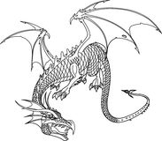 Dragon bw. Ancient Dragon, vector illustration. Black and white Stock Image