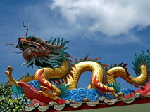 Dragon on Chinese shrine roof top Stock Images