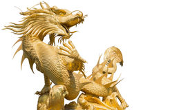 Dragon chinois d'or géant sur le fond d'isolat photo libre de droits