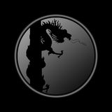 Dragon coins. Black Dragon Coins With authority over all else Royalty Free Stock Image