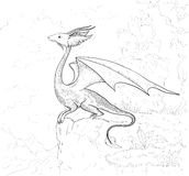 Dragon coloring page. Dragon contour for coloring book. Stock Image
