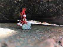 Dragon d'émeraudes Image libre de droits