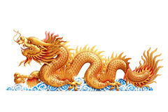 Dragon d'or photos stock