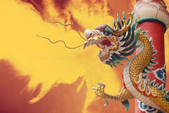 Dragon d'or avec le fond d'isolat Photos stock