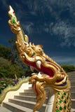 Dragon d'or dans le temple de Bouddha, Thaïlande Photographie stock libre de droits