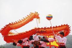 Dragon dance performance royalty free stock photos