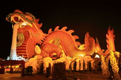Dragon de Dieu Photo stock