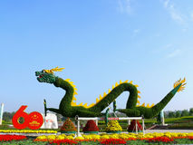 Dragon de la Chine Photo stock