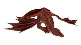 Dragon de repos Photos libres de droits