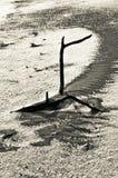 Dragon de sable dans la neige Photos stock