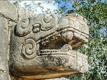 Dragon en pierre Photo stock