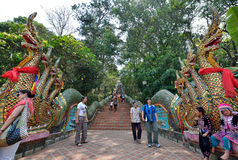 Dragon Entrance of Wat Phra That Doi Suthep, Chiang Mai. Dragon Entrance of the temple Wat Phra That Doi Suthep, which is a Theravada Buddhist temple in Chiang Stock Image