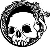 Dragon et crâne Photo libre de droits