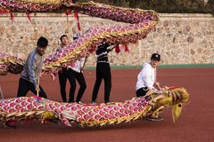 Dragon Festival In China, Dragon Dance stockfoto