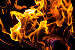 Dragon fire Royalty Free Stock Photo