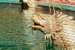 Dragon Fish Sculpture in the Pond Stock Image