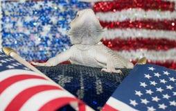 Dragon Flags zero Fotografia Stock Libera da Diritti