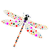 Dragon-fly. On a white background Stock Images