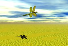 Dragon fly. Graphic background Stock Image