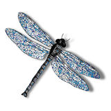 Dragon fly against white Stock Photos