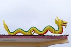 Dragon Fly está no telhado. Imagens de Stock Royalty Free