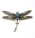 dragon-fly pendant jewelry isolated on white Stock Photography
