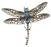 Dragon-fly pendant jewelry isolated on white Royalty Free Stock Photo