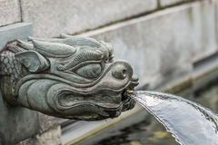 Dragon fountain Chi Lin Nunnery Kowloon Hong Kong. Dragon fountain Chi Lin Nunnery Kowloon in Hong Kong royalty free stock photography