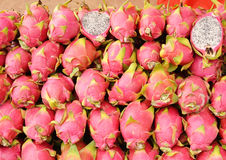 Dragon Fruit Arkivbilder