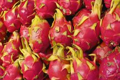 Dragon Fruit Stock Foto