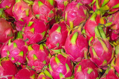 Dragon Fruit royalty-vrije stock foto