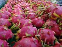 Dragon Fruit Imagen de archivo libre de regalías