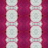 Dragon fruit background Royalty Free Stock Images