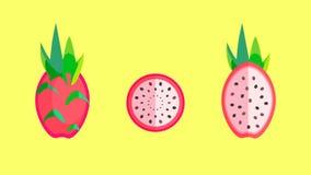 Dragon Fruit Banner Vector Illustration Stock