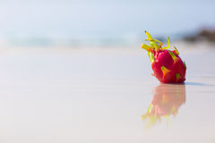 Dragon fruit on the beach. On blue sea background royalty free stock image