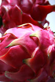 Dragon fruit - detail stock photography