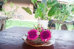 Dragon-fruit in dish on the table. Stock Image