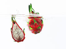 Dragon fruit. Falling into water vector illustration